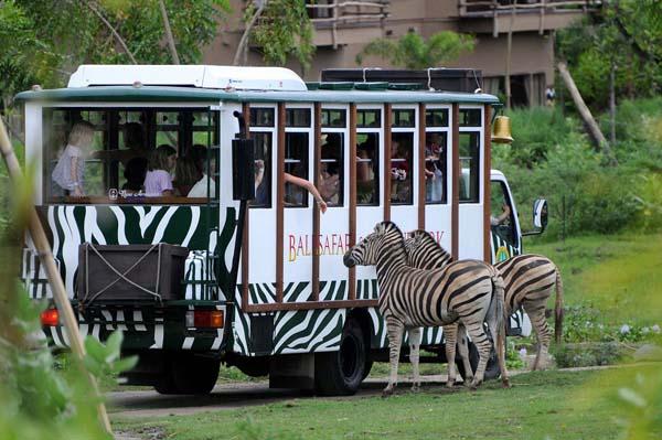 巴厘岛野生动物园(Bali Safari & Marine Park)5.jpg