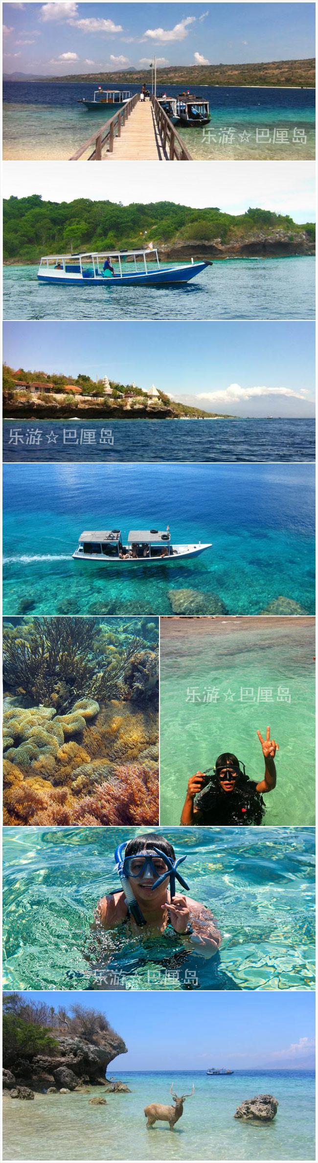 巴厘岛自由行鹿岛(Menjangan island 孟嘉干岛)深潜/浮潜/潜水一日游.jpg
