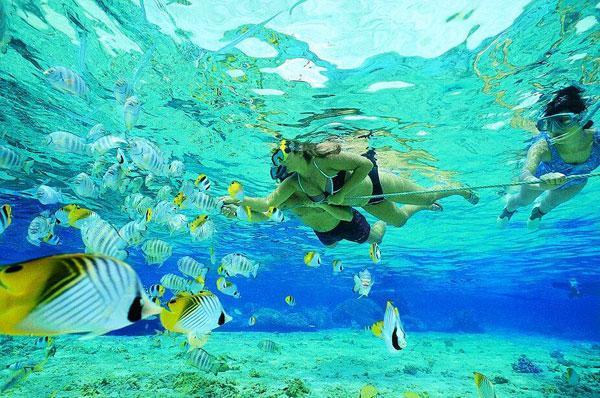 巴厘岛金银岛(Nusa Ceningan)浮潜