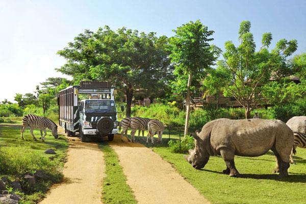 巴厘岛野生动物园(Bali Safari & Marine Park)