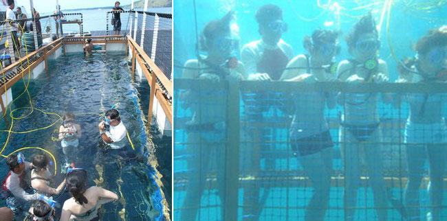 巴厘岛金银岛(Nusa Ceningan)海底监狱