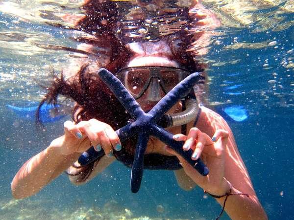 巴厘岛自由行潜水一日游 鹿岛潜水一日游 Menjangan island/门姜干岛/鹿岛深潜和浮潜
