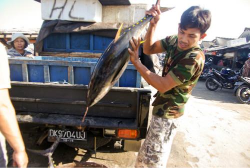 巴厘岛游记:海鲜控的天堂,金巴兰海鲜市场!7.JPEG