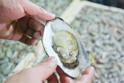 巴厘岛游记:海鲜控的天堂,金巴兰海鲜市场!23.JPEG