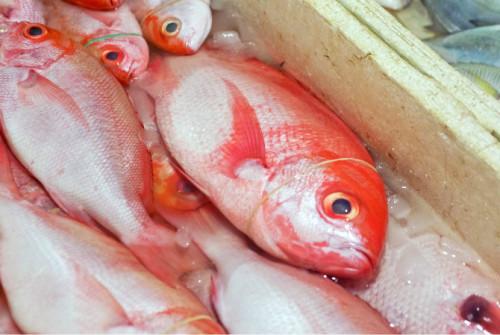 巴厘岛游记:海鲜控的天堂,金巴兰海鲜市场!27.JPEG