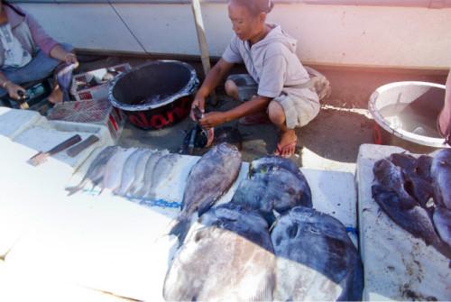 巴厘岛游记:海鲜控的天堂,金巴兰海鲜市场!19.JPEG