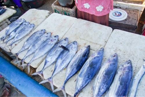 巴厘岛游记:海鲜控的天堂,金巴兰海鲜市场!20.JPEG