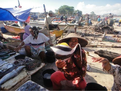 巴厘岛游记:海鲜控的天堂,金巴兰海鲜市场!10.JPEG