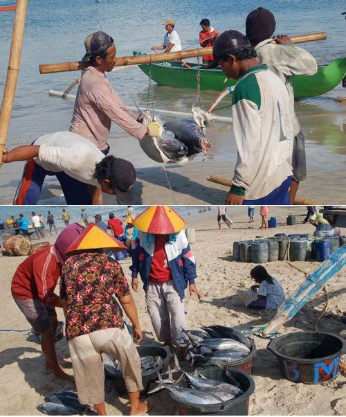 金巴兰海鲜市场(Jimbaran Fish Market - Pasar Ikan)18.jpg