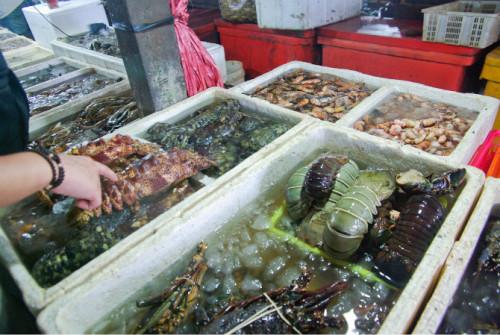 巴厘岛游记:海鲜控的天堂,金巴兰海鲜市场!24.JPEG