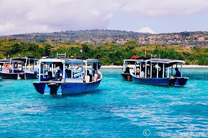 鹿岛/孟嘉干岛(Menjangan island)4.jpg