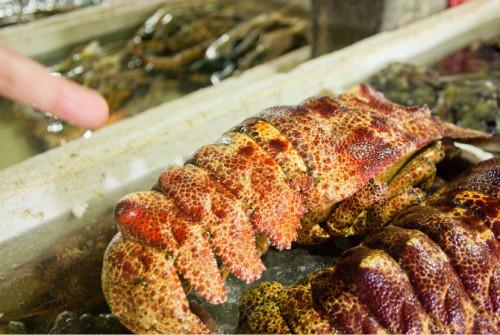 巴厘岛游记:海鲜控的天堂,金巴兰海鲜市场!22.JPEG