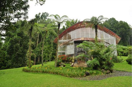 巴厘岛乌布植物园(Botanic Garden Ubud)