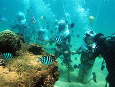 巴厘岛南湾水上活动中心 海底漫步(sea walker)+海底喂奶项目预订!巴厘岛自由行活动代理预定!