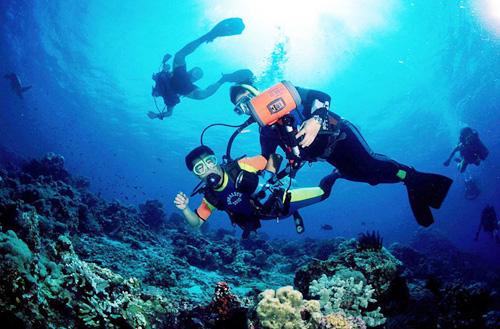 巴厘岛潜水:南湾深潜、图兰奔潜水、鹿岛潜水的区别!