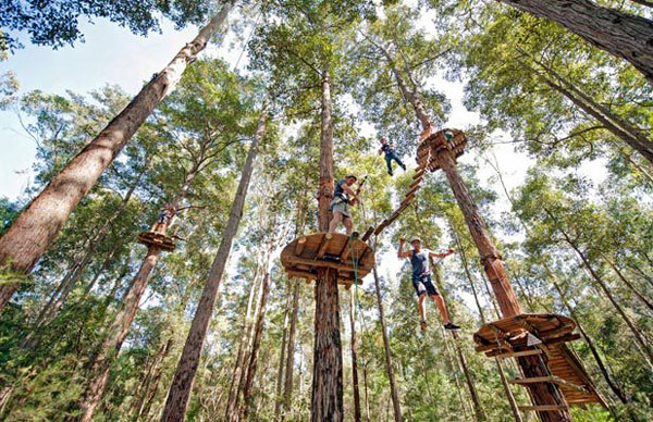 Bali Treetop Adventure Park1.jpg