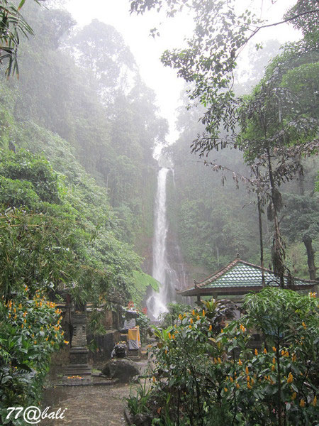 Gitgit Waterfall 2.jpg