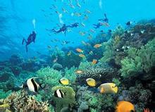 巴厘岛旅游视频《图兰奔——潜水者的天堂》