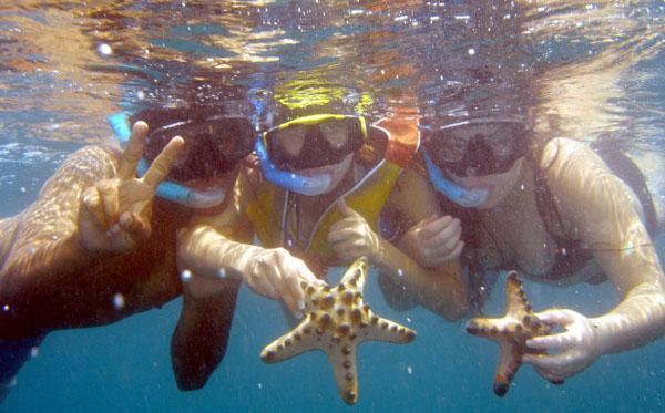 巴厘岛看海豚+浮潜2.jpg