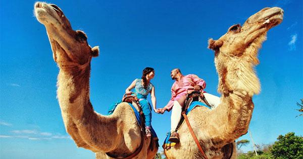 巴厘岛骑骆驼2.jpg