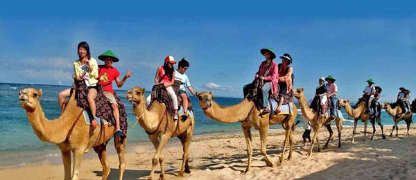 巴厘岛骑骆驼4.jpg