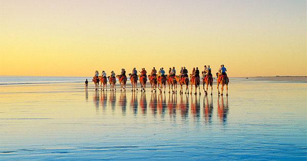 巴厘岛骑骆驼1.jpg