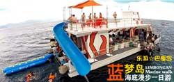 巴厘岛蓝梦岛出海一日游 红树林-浮潜-香蕉船-海底漫步-黄色爱之船-梦幻海滩-环岛游