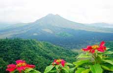 兰若静云:巴厘岛赏巴图尔火山,喝猫屎咖啡!