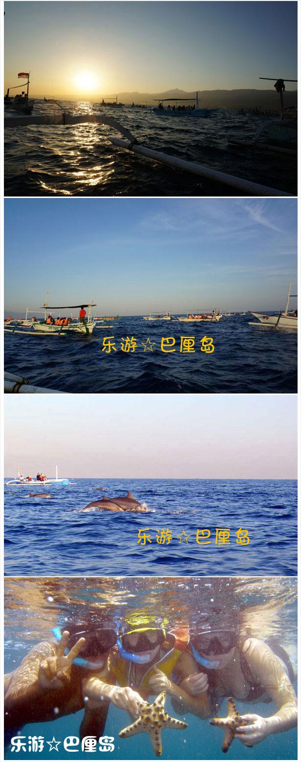 巴厘岛看海豚.jpg